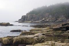 Litorale nebbioso della Maine Fotografie Stock Libere da Diritti