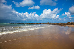 Litorale oceanico Fotografia Stock Libera da Diritti