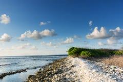 Litorale roccioso a bassa marea su Kudavilingilli - le Maldive Fotografie Stock Libere da Diritti