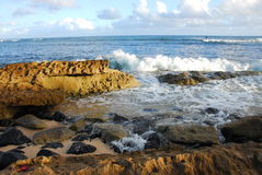 Litorale roccioso dal mare Fotografia Stock