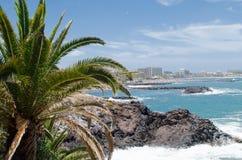 Litorale roccioso dell'isola della Costa Adeje Isola di Tenerife, Canari Immagini Stock