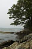 Litorale roccioso della Maine Immagine Stock