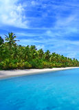Litorale tropicale immagine stock libera da diritti