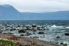 Litorali rocciosi dal bordo della strada, Gros Morne National Park, Ne fotografia stock libera da diritti