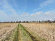 Litouws de lentelandschap Royalty-vrije Stock Afbeeldingen