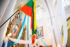 Litouwse vlag Royalty-vrije Stock Foto's