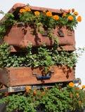 Lits de fleur dans une vieille valise (voyage, voyage, agence de voyages, d Photographie stock