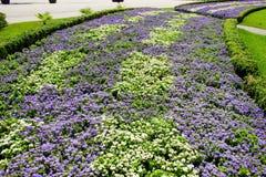 Lits de fleur en parc Photos libres de droits