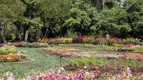 Lits de fleur multiples chez Dallas Arboretum photo stock