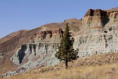 Lits fossiles de jour de John, Orégon, Etats-Unis Image stock