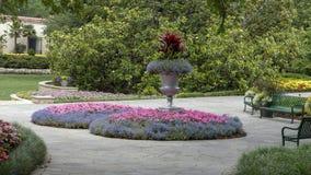 Lits plantaires et colorés de gobelet droit de fleur chez Dallas Arboretum photos libres de droits