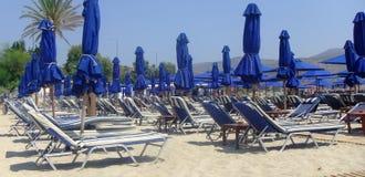 Lits pliants bleus dans la plage Photographie stock