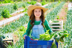 Litte kid farmer girl in vegetables harvest. At orchard Royalty Free Stock Images