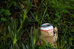 Litter. A beer can in a paper bag on the ground Royalty Free Stock Photography