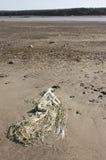 Litter on beach Stock Photo
