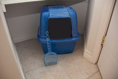 Litter box with scoop stock photo