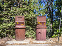 Litter boy in the sequoia national park Royalty Free Stock Photos