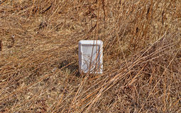 Litter in brown grass Royalty Free Stock Images