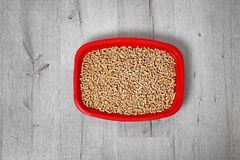 Litter tray for cat on floor, top view. Pet care royalty free stock photography