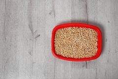 Litter tray for cat on floor, top view. Pet care royalty free stock image