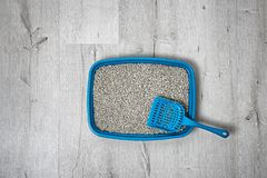 Litter tray and scoop for cat on floor, top view. Pet care royalty free stock photos