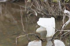 Littered Mangroves - No Name Key - Key West Florida Stock Images