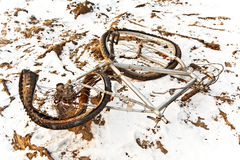 Littered and rusty bicycle Stock Image