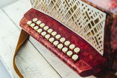A little accordion, harmonica royalty free stock photography