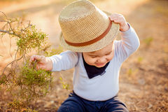 Little adorable baby boy in a straw hat and blue shirt sitting n. Ear a tree on the ground at sunset in the summer, and tries to take off his hat Royalty Free Stock Image