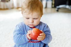 Little adorable baby girl eating big red apple Stock Images