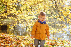 Little adorable boy in yellow jacket looks angrily at the park i Royalty Free Stock Images