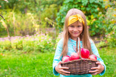 Little adorable girl with basket of red apples in Royalty Free Stock Photo