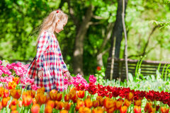 Little adorable girl in blooming tulips garden. Warm spring day outdoors Royalty Free Stock Photos