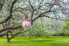 Little adorable girl on blossoming apple tree Stock Photography