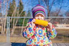 Little adorable girl eating corn outdoors Royalty Free Stock Photography