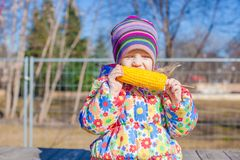 Little adorable girl eating corn in the park on a warm spring day Stock Photography