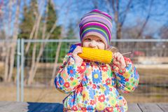 Little adorable girl eating corn in the park on Royalty Free Stock Photography