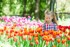 Little adorable girl with flowers in blooming tulips garden. Little beautiful girl in lush tulips garden at warm spring day Royalty Free Stock Images