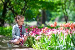 Little adorable girl with flowers in tulips garden Stock Images