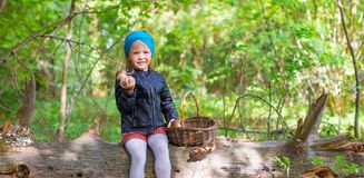 Little adorable girl gathering mushrooms in an Royalty Free Stock Photography