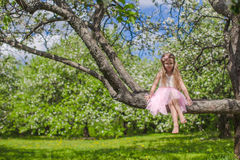 Little adorable girl sitting on blossoming apple Royalty Free Stock Image