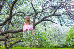 Little adorable girl sitting on blossoming tree in Stock Image