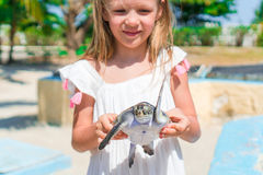 Little adorable girl with a small turtle in her hands in the reserve Stock Photography