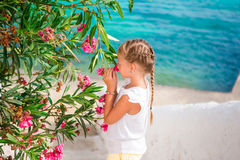 Little adorable girl smelling colorful flowers at summer day Stock Image