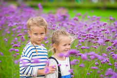 Little adorable girls walking outdoors in flowers field Stock Images