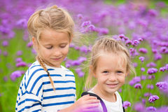 Little adorable girls walking outdoors in flowers field Stock Photos