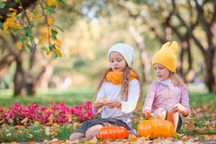 Little adorable girls at warm day in autumn park outdoors royalty free stock photos