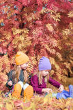 Little adorable girls at warm sunny autumn day Royalty Free Stock Photography