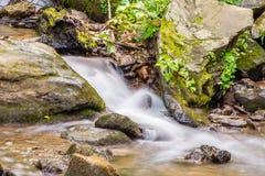 Little Amicalola Creek Royalty Free Stock Images