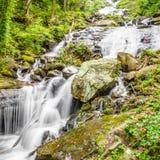 Little Amicalola Creek Stock Photo